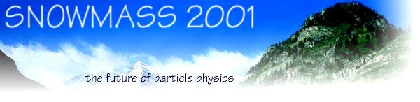 Snowmass 2001 Logo